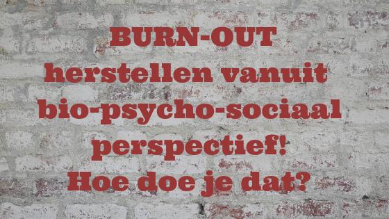 BURN-OUT: herstellen vanuit biopsychosociaal perspectief, hoe doe je dat?